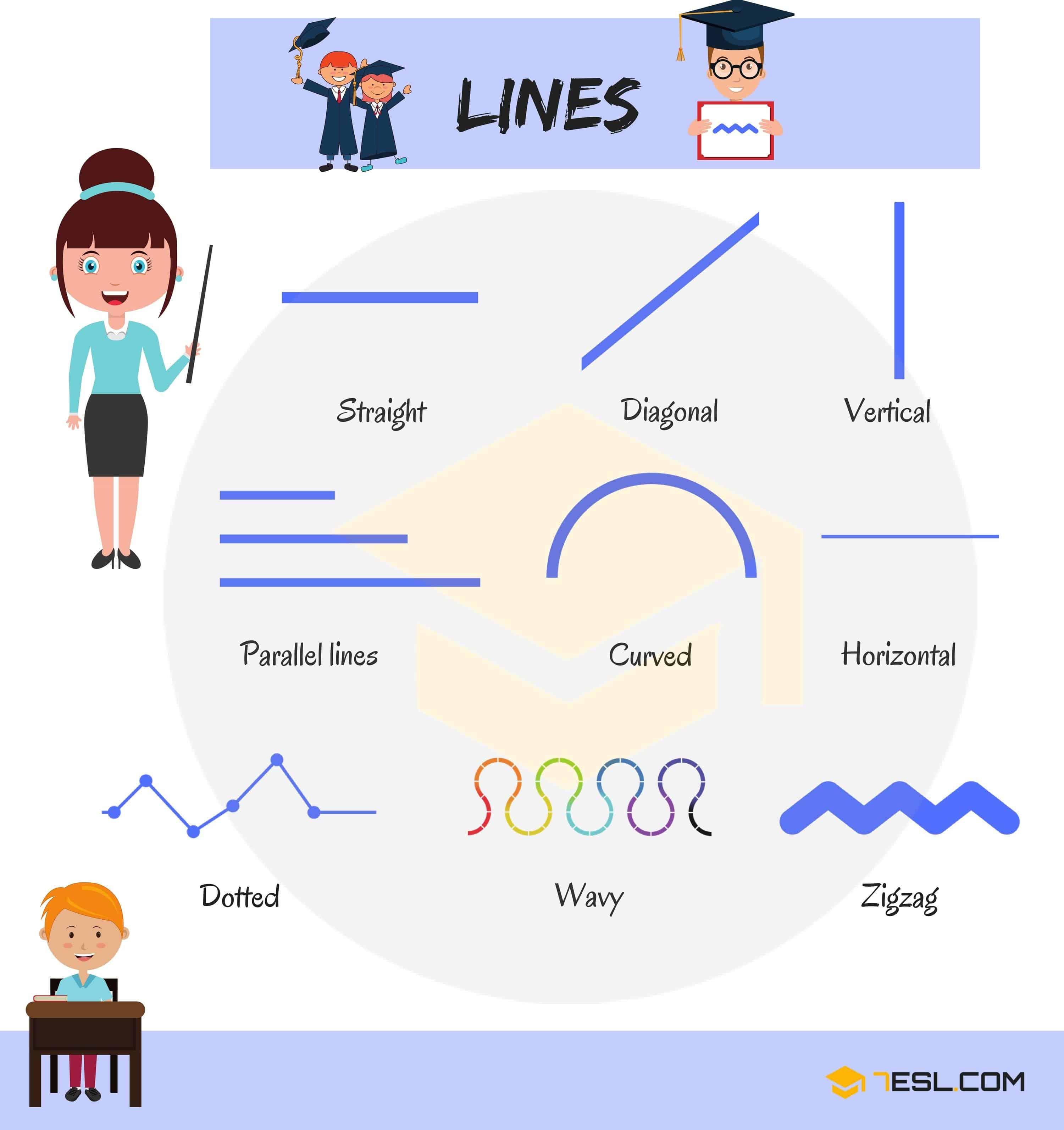 Tên gọi các loại đường trong hình học bằng tiếng Anh